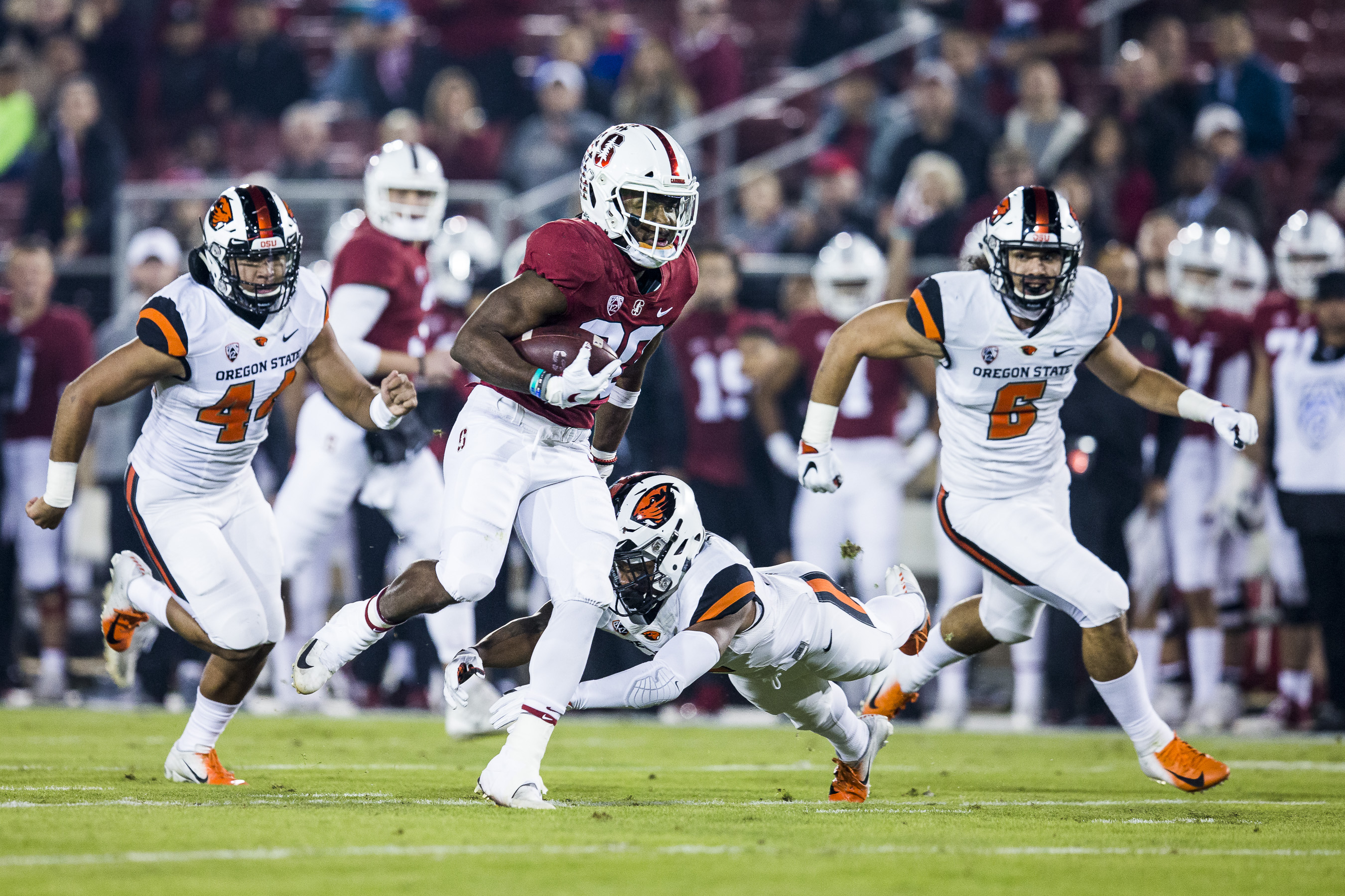 Portfolio(20181110 – Football Stanford – Oregon State – 130)